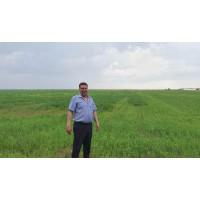Сельхозпроизводители региона оценили результаты применения органического удобрения от Зеленецкой птицефабрики