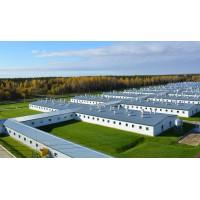 Зеленецкий свинокомплекс – современное предприятие европейского уровня